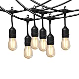 Ashialight 12 Volt LED Commercial Grade String Lights With Hanging Sockets-Heavy Duty Outdoor String Lights,48ft Strand, 24pcs12 Volt LED Light Bulbs for Patio Garden Porch Backyard Party Deck Yard