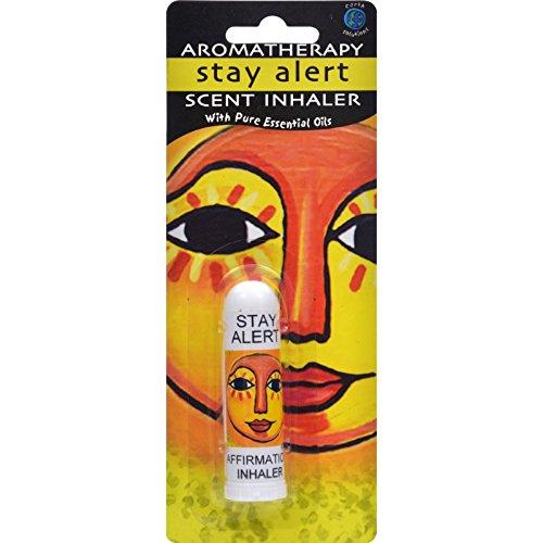 Inhaler Stay (Earth Solutions Aromatherapy Stay Alert Scent Inhaler - 1 Inhaler)