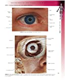 Atlas of Clinical Gross Anatomy: With STUDENT