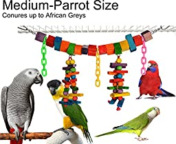 Color Blocks and Beads Swing & Chew Bird Toy (Medium Parrot Size)