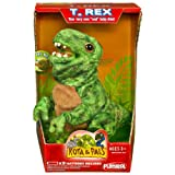 Playskool Kota and Pals Hatchling T - Rex