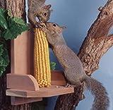 Songbird Essentials Cedar Platform Squirrel Feeder with Critter Corn