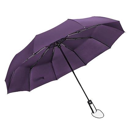 Wildlead Paraguas Plegable automático Resistente al Viento Lluvia Paraguas sombrilla Lluvia Grande Recubrimiento Negro 10 Costillas