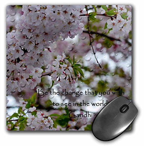 3dRose Be The Change Gandhi Inspirational Quote On Photography Art Mouse Pad (mp_127822_1)