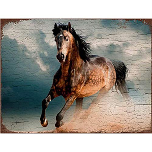 - Horse Metal Tin Sign Wall Sign by Retro Style Bar Back Diner Cafe Home Art Poster Plaque House Gift Garage Kitchen Food Man Cave Beach