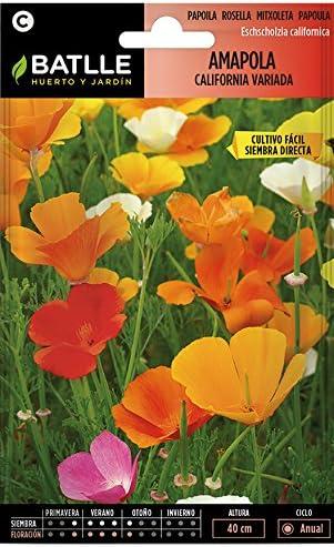 Semillas de Flores - Amapola California variada - Batlle: Amazon ...