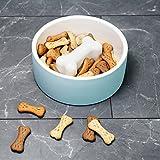 Magisso Happy Pet Project Naturally Cooling Ceramics Food Bowl (Blue Bone, 8 Inch)
