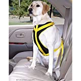 Safety Harness Canine Auto, Size: Medium For Sale