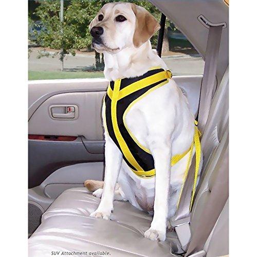 Safety Harness Canine Auto, Size: Medium