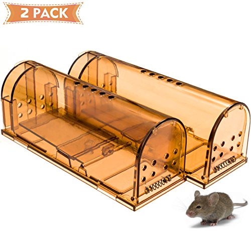 UPGRADED CaptSure Humane Smart Mouse Trap, Live Catch and Release, Kids/Pet Safe, Easy To Set, For Indoor/Outdoor, Reusable Cage Box, For Small Rat/Mouse/Hamster/Mole Catcher That Works. 2 Pack