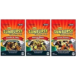 Higgins Sunburst Gourmet Natural Treats 3 Flavor Variety Sampler Bundle: (1) Fruit & Stix, (1) Boca Nuts, and (1) True Fruits, 5 Oz. Ea. (3 Bags Total)
