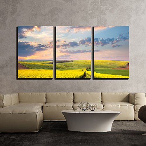 wall26 - 3 Piece Canvas Wall Art - Yellow Flowering Fields, Ground Road and Beautiful Valley, Nature Spring Landscape - Modern Home Decor Stretched and Framed Ready to Hang - 16