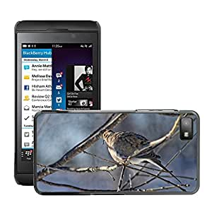 Hot Style Cell Phone PC Hard Case Cover // M00046700 k01 bird birds animals branches dove // BlackBerry Z10