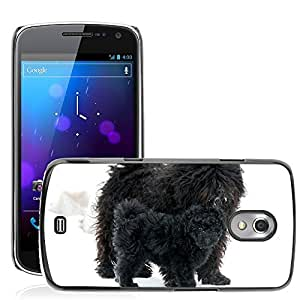 Hot Style Cell Phone PC Hard Case Cover // M00116179 Puli Dog Canine Cute Adorable // Samsung Galaxy Nexus GT-i9250 i9250