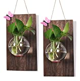 Ivolador Wall glass hanging planter with wooden board for Wall background decoration ((Wood + round vase) X 2 Set)