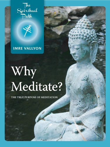 Nirvana 1 Light (Why Meditate?: The True Purpose of Meditation (The Spiritual Path Series Book 1))