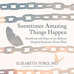 Sometimes Amazing Things Happen Audiobook