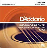 D'Addario EJ42 Resophonic Guitar Strings, 16-56