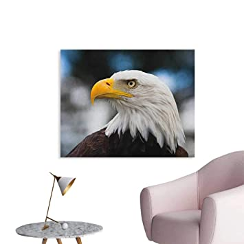Amazoncom Anzhutwelve Eagle Wallpaper Photo Of The Head Of