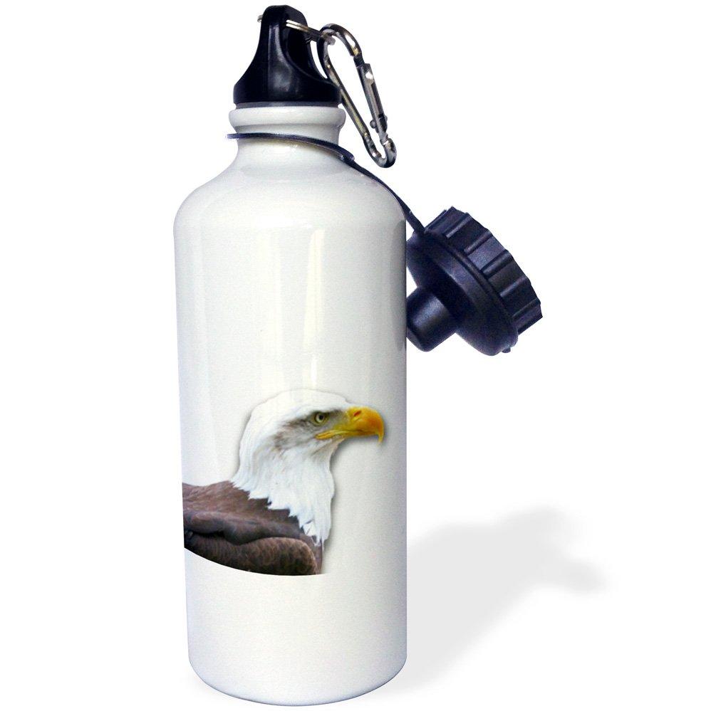 3dRose wb_155628_1 ''Bald Eagle bird of prey profile on white-eagle scout gifts-wild animal wildlife photography'' Sports Water Bottle, 21 oz, White