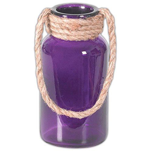 "Hill's Park's Cylindrical Glass Vase with Rope Handle (6.5"", Purple)"