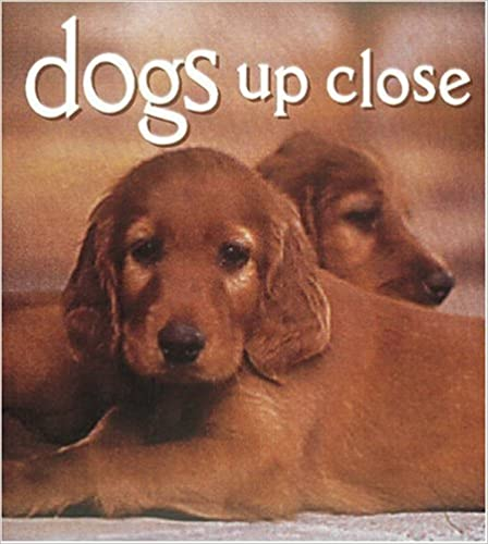 Dogs Up Close