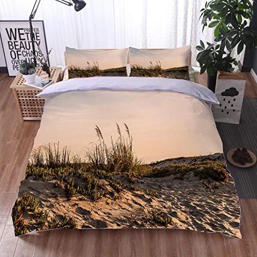 - HOOMORE Bed Comforter - 3-Piece Duvet -All Season, Sand Dunes at Coronado Beach at Dusk,HypoallergenicDuvet-MachineWashable -Twin-Full-Queen-King-Home-Hotel -School