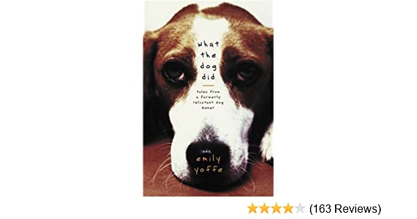 What The Dog Did Tales From A Formerly Reluctant Dog Owner Amazon