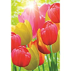 Decorative Tulip Garden Flag Colorful Spring Summer Blooms Double Sided 12.5'' X 18''