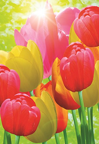 (Decorative Tulip Garden Flag Colorful Spring Summer Blooms Double Sided 12.5'' X 18'')