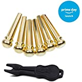 Guitar Bridge Pins 6pcs Brass Endpin 6 String Pegs With Electric Gold Plating Acoustic Guitar Replacement Parts - Leomanor