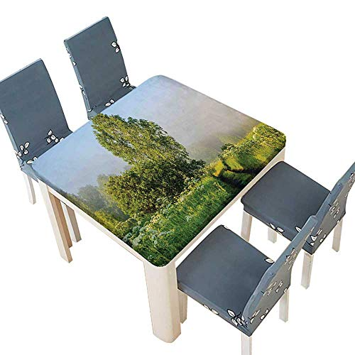 (PINAFORE Tablecloth Waterproof Polyester Table Beautiful Serenity Trees Track Path Garden Leaves Grass Sunny Skies Photography Green Tablecloth Wedding/Party 72.5 x 72.5 INCH (Elastic Edge))