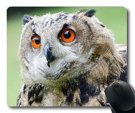 Cojín de ratón Grande del Juego, búho de águila Europeo de los Tatuajes del búho, cojín de ratón con los Bordes cosidos: Amazon.es: Electrónica