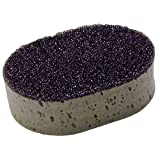 Detailer's Choice 9-98 2N1 Sponge with Bug and Tar Remover