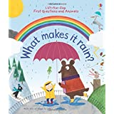 Lift-the-flap First Questions & Answers what makes it rain?