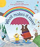Lift-the-Flap First Questions and Answers What Makes it Rain?