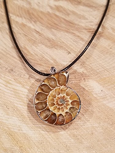 Real Ammonite Fossil Pendant Leather Necklace Primitive Ocean Shell Jewelry Hippie Boho Handmade Sea Collection (N397) Shell Pendant Leather Necklace