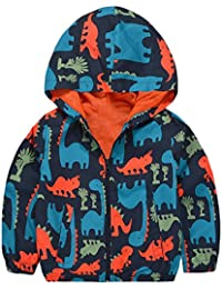 Boy's Cartoon Dinosaur Print Zip Jacket Hooded Windproof Raincoat