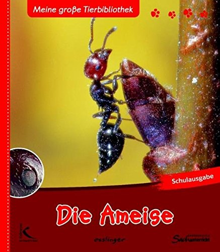 Die Ameise: Meine große Tierbibliothek