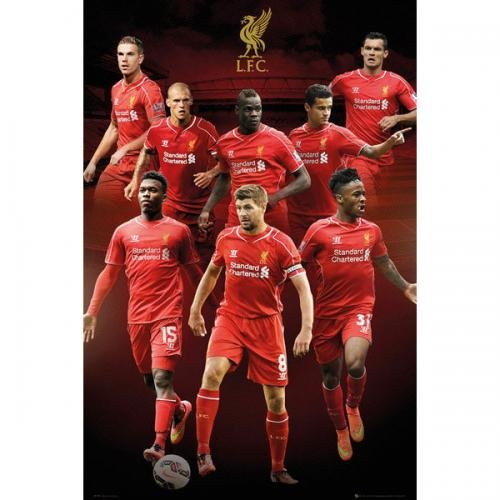 1 X Liverpool Collage 2014-2015 24
