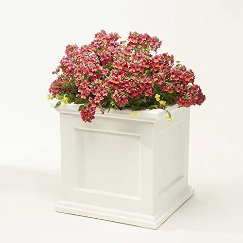 Novelty 18182 Madison 18-Inch Square Planter White