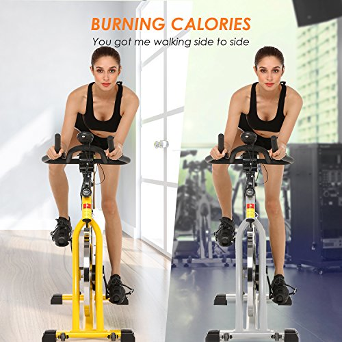Spinning Bike Spin Pro Indoor Cycling Bike with Pulse for Health and Fitness (silver)
