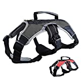 Peak Pooch Dog Support Harness Vest, No Pull with Reflective trim and Padded Comfort (Black, Small (20″ – 27″ chest))