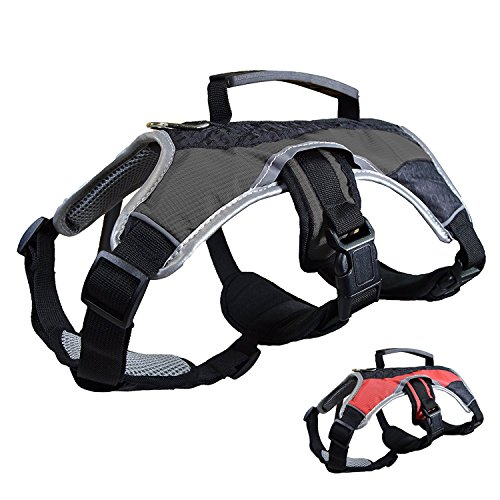 Dog Walking Lifting Carry Harness, Support Mesh Padded Vest, Accessory, Collar, Lightweight, No More Pulling, Tugging or Choking, for Puppies, Small Dogs (Black, Small), by Downtown Pet - First Aid Dog Choking