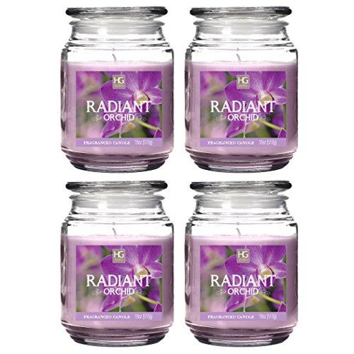 Orchid Wedding Favors (Hosley's Set of 4 Radiant Orchid Jar Candles - 18oz Each. Ideal votive GIFT for party favor, weddings, Spa, Reiki, Meditation, Bathroom)