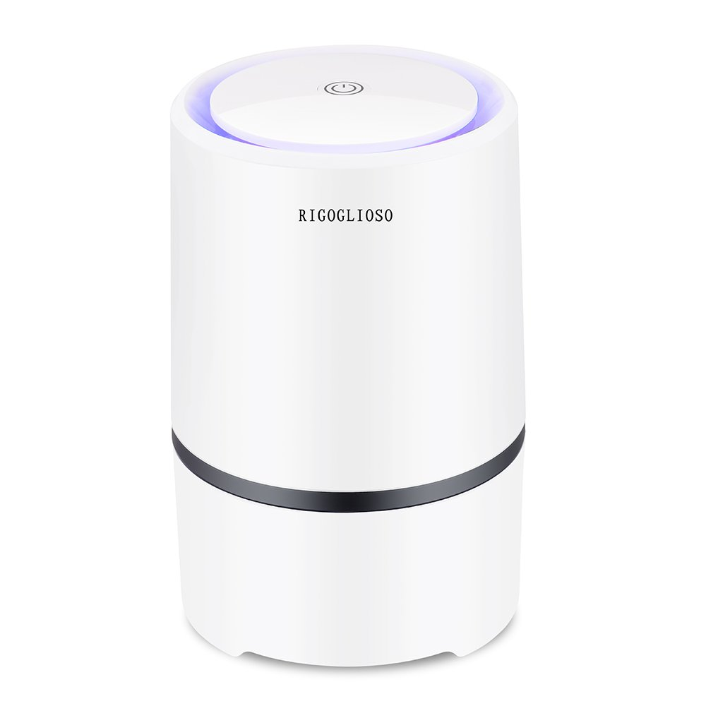 Portable Air Purifier for Home with True HEPA & Carbon Filters, Desktop USB Air Cleaner, Air Ionizer Freshener with LED Night Light, PM2.5 Eliminator Cleaner for Cigarette Smoke, Allergies, Bacteria