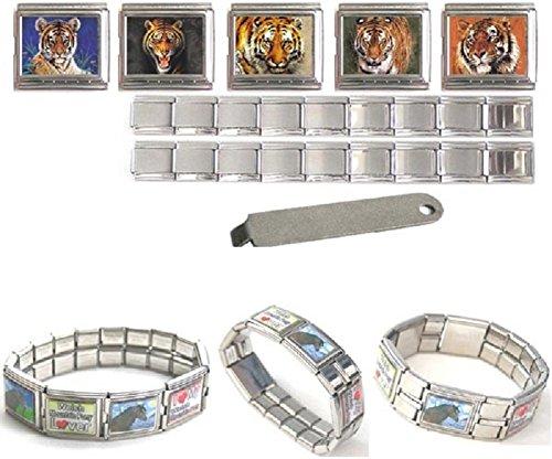 Tigre du Bengale 18mm en acier inoxydable Mega Italian Charms Bracelet