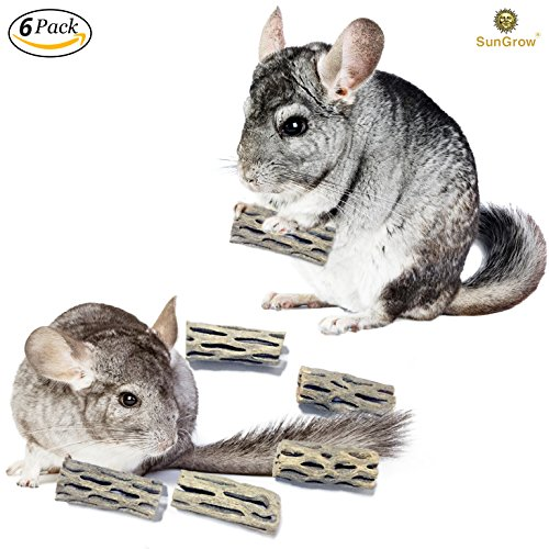6-pcs Natural Cholla wood for Chinchillas by SunGrow - 100% Organic soft wood, Chemical-free, thorn-free - Keeps pet's teeth healthy - Chew toy for ferret, guinea pig, gerbil, mice, hamster, rabbit