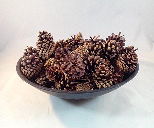 Natural Pine Cones, Lodge Pole Decorative Fall Winter Holiday Home Decor Vase Filler, 18 PCS