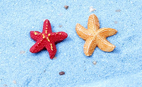Liroyal Aquarium Starfish For Fish Tanks 2 Pcs